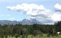 View of surrounding area. Pictured here is Mt. Arrowsmith.